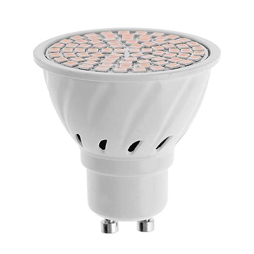 Trendyest - Bombilla LED GU10 AC 220 – 240 V, ahorro de energía, Warm