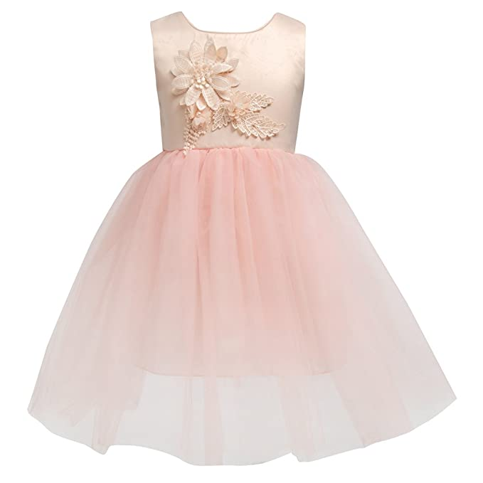 Amazon.com: Merry Day Flower Girl Party Dress Kids Toddler Tulle ...