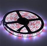 BonvieTech RGBW 5050 Waterproof Strip Light RGB+Cool White Color 300 LEDs 5 Meters Strip Light for Home,Bars,Gardens,Parties Decoration.