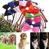 Cravate pr chien chat animaux col noeud papillon réglable Collier décor noir