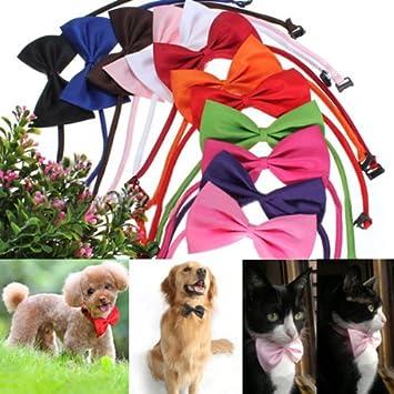 sélectionner pour officiel la clientèle d'abord nouvelle version Cravate pr chien chat animaux col noeud papillon réglable Collier décor noir
