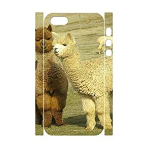 XOXOX Phone case Of Lama Pacos Cover Case For iPhone 5,5S [Pattern-5]