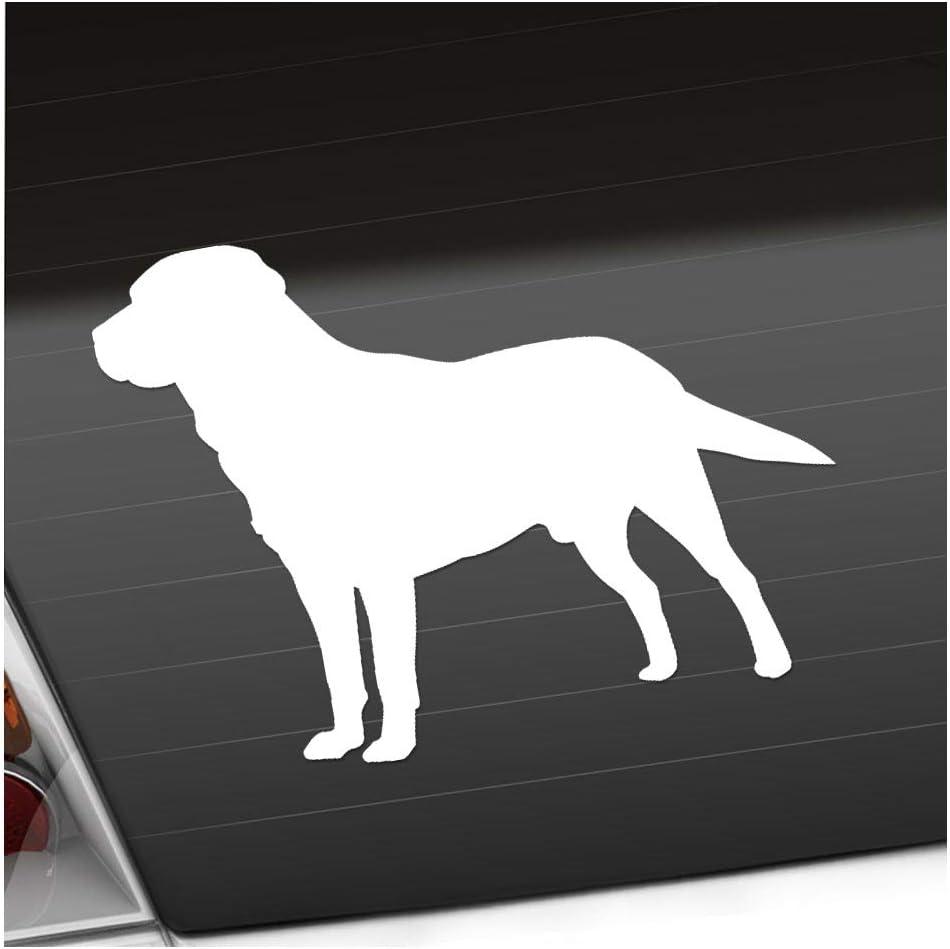Labrador Hund Retriever 13 X 10 Cm In 15 Farben Neon Chrom Sticker Aufkleber Auto