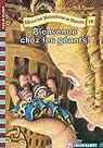 L'Ecole des Massacreurs de Dragons, Tome 19 : Bienvenue chez les géants ! par McMullan