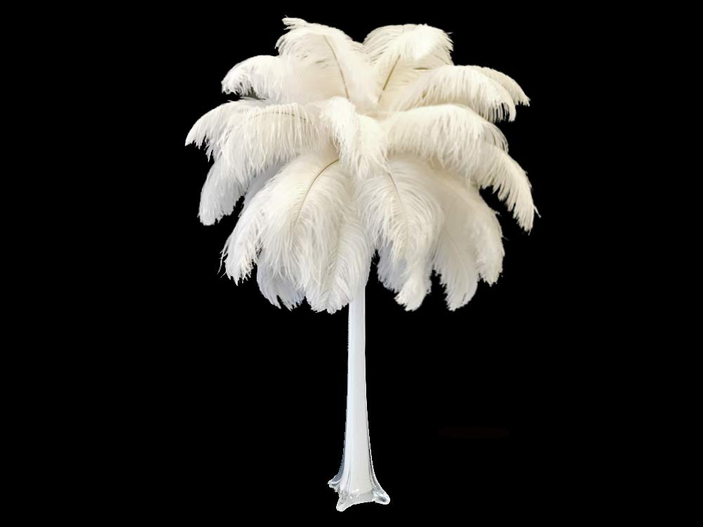 Moonlight Feather | 10 Pieces - 19-24'' Off White Ostrich Dyed Drabs Body Feathers Wedding Party Gatsby Centerpiece Supplier