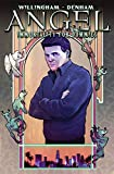 Angel: Immortality For Dummies (Angel (IDW Hardcover))