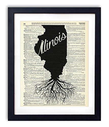 Illinois Home Grown Upcycled Vintage Dictionary Art Print 8x10