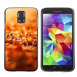 Be Good Phone Accessory // Dura Cáscara cubierta Protectora Caso Carcasa Funda de Protección para Samsung Galaxy S5 SM-G900 // Nature Beautiful Forrest Green 43