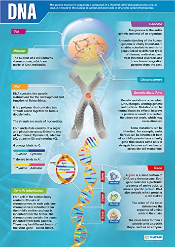 """DNA Poster 