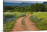 Premium Thick-Wrap Canvas Wall Art Print entitled Wildflowers at dirt road in Texas Hill Country
