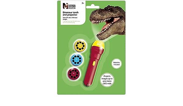Brainstorm Toys - Linterna con proyector de imágenes de ...