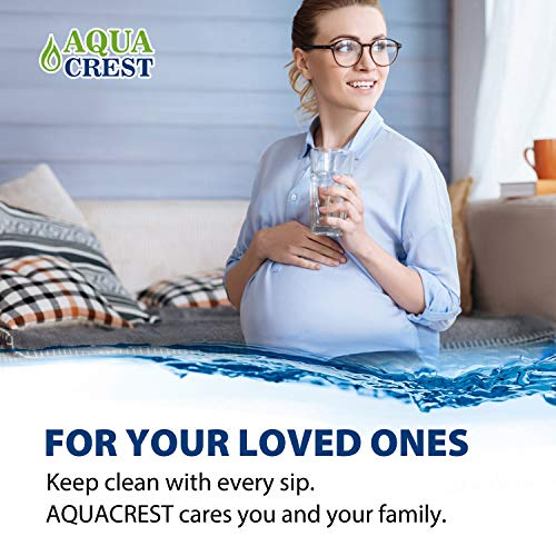 AQUA CREST RF-9999 Water Filter, Compatible with Pur RF-9999