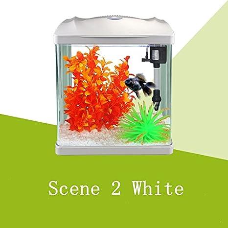 misun Mini ecología Kit con tanque de tortuga tanque de peces de acuario paisajismo ornamental, iluminación LED y filtro de agua interno.