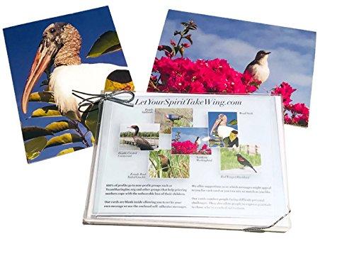 Let Your Spirit Take Wing - Comfort Cards - Box Set of 6