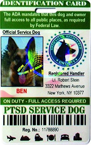 IDCards4U PTSD Service Dog Badge Id