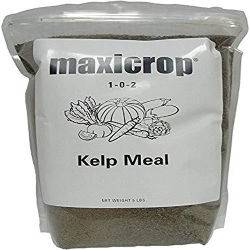 Maxicrop 5000 Kelp Meal