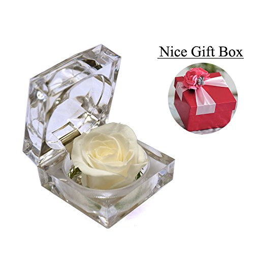 Handmade Preserved Fresh Flower Rose with Acrylic Crystal Box – Romantic Small Gift Ideas for Valentine's Day, Anniversary, Birthday (White)