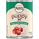 NUTRO PUPPY Tender lamb & Rice Recipe Pate Canned Dog Food 12.5 Ounces (Pack of 12)