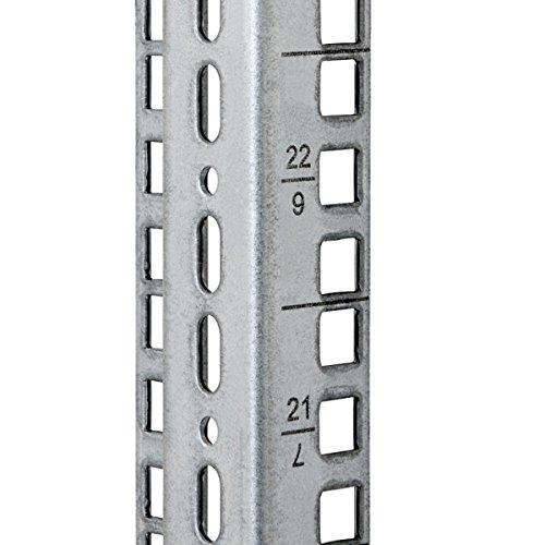 TRITON Rack-Schiene - 9U RAX-VL-X09-X1