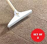 CARPET RAKE - SET OF 2