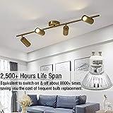 GU10 Halogen Light Bulb, MR16 Light Bulbs 120V/50W, Glass Cover & Dimmable, 500 Lumens Warm White, High Efficiency Halogen Flood Light Bulbs for Indoor
