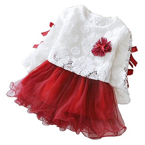 Baby Holiday Dresses (2 - piece Baby Girls Long Sleeve Princess Flower Dress, Red,)