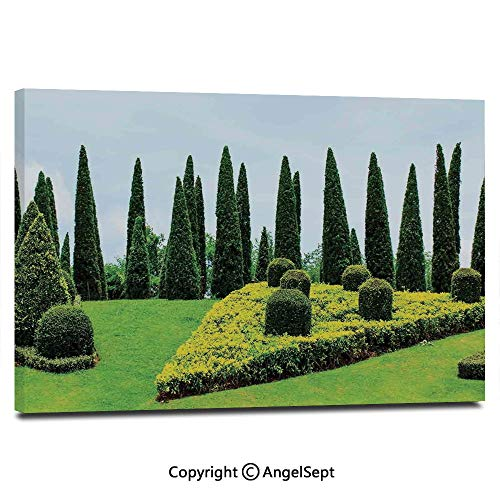 Modern Salon Theme Mural Classic Formal Designed Garden with Evergreen Shrubs Boxwood Topiaries Painting Canvas Wall Art for Home Decor 24x36inches,