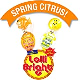 LOLLIBRIGHTS: America's First Color Light-Up Lollipop! 6 Delicious Flavors; Green Apple Frog, Strawberry Rose, Smiley Lemon, Orange Goldfish, Blue Raspberry Bear, and Cherry Heart! (12)