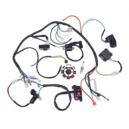 ETbotu Electric Wiring Harness Wire Loom CDI Stator Assembly for ATV QUAD 125CC-250CC: