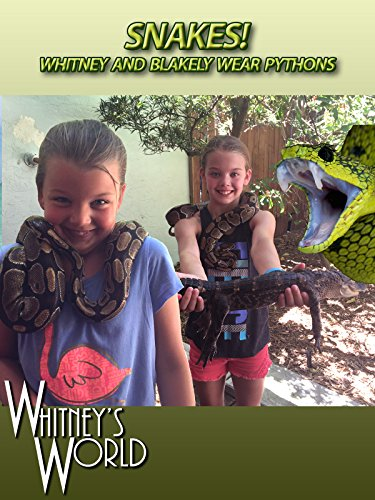 snakes-whitney-and-blakely-wear-pythons
