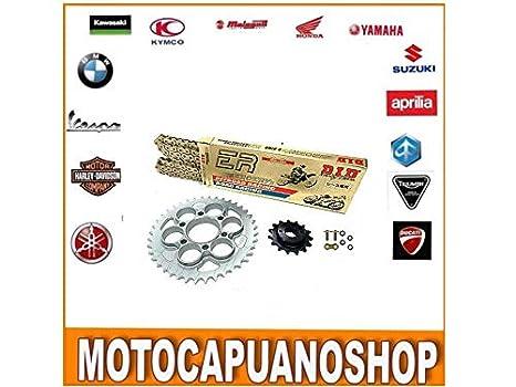 chándal Professional Honda 1300 CB f Super Four 2003 2004: Amazon ...