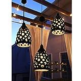 Solar Hanging Lights,TAKEME Solar Outdoor Lights Garden Decorative Luminated by 50 Lumens LED Bulb,Metal Waterproof Outdoor Lights