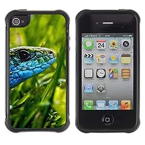 Suave TPU GEL Carcasa Funda Silicona Blando Estuche Caso de protección (para) Apple Iphone 4 / 4S / CECELL Phone case / / Lizard Green Grass Sun Blue Snake /