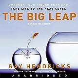 Bargain Audio Book - The Big Leap