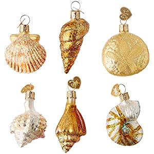 518JddDfdBL._SS300_ 100+ Best Seashell Christmas Ornaments