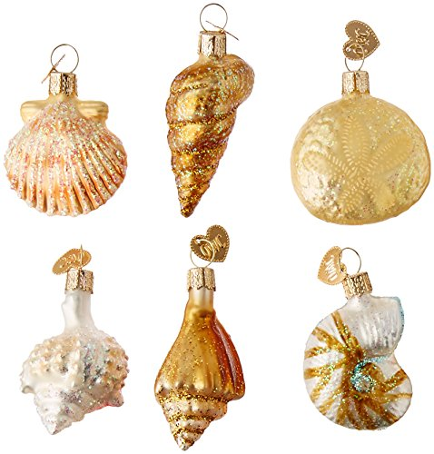 Old World Christmas Ornaments: Assorted Sea Shell Set Glass Blown Ornaments for Christmas Tree