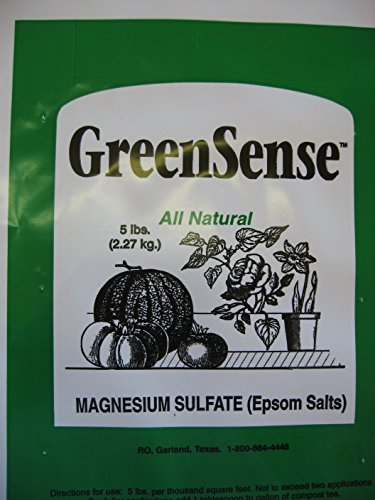 Epsom Salts Magnesium Sulfate Greensense 5 Pounds Buy Online In Uae Products In The Uae