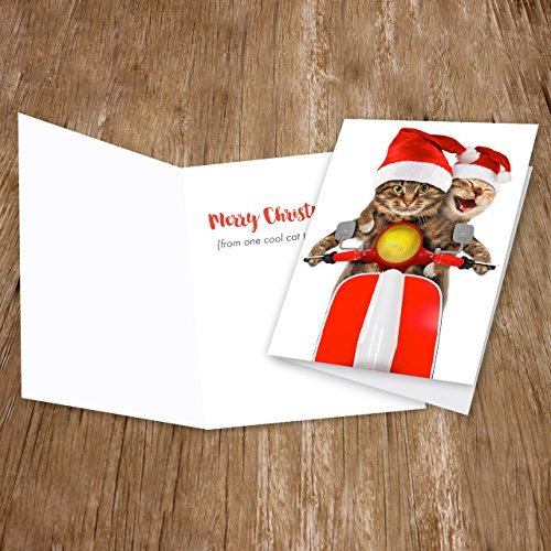 Scooter Cats Holiday Card Pack - Set of 25 cards - 1 design, versed inside with envelopes Photo #3