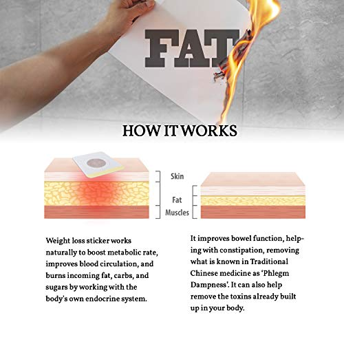 Sticker with Magnets - Best for Waist Abdominal Fat, Quick Slimming (60 Pcs) 6