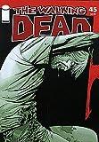 Walking Dead (2003 series) #45