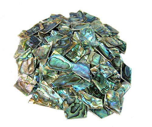 Yuan's 2oz Irregular Size Pieces by Sea Green Abalone Paua Shell. One Side Polished. For Mosaic Art Tiles, Musical Instrument Inlay Jewelry Design. (2oz - Irregular Cut, Green Abalone-B-Regular)