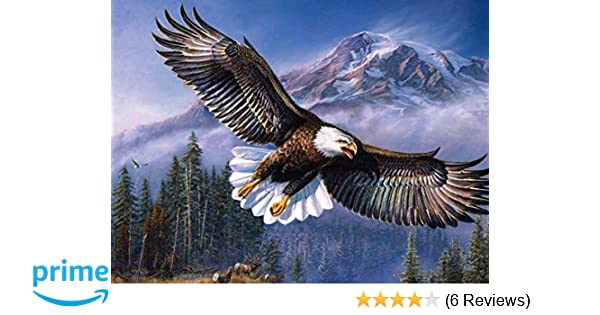 Amazon com: Flying Eagle -Oil Painting On Canvas Modern Wall