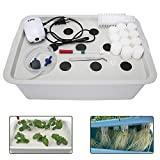 Yaegoo Indoor Hydroponics Grower Kit 11 Pods DIY Self Watering Hydroponics Tools Plant Cloner Kit Hydroponic System Planting Container Include Aquarium Air Pump Buoy Planting Box etc