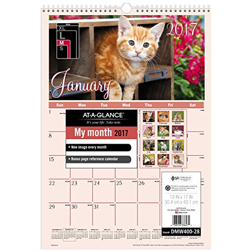 "AT-A-GLANCE Wall Calendar 2017, Monthly, 12 x 17"", Wirebound, Kittens (DMW40028)"