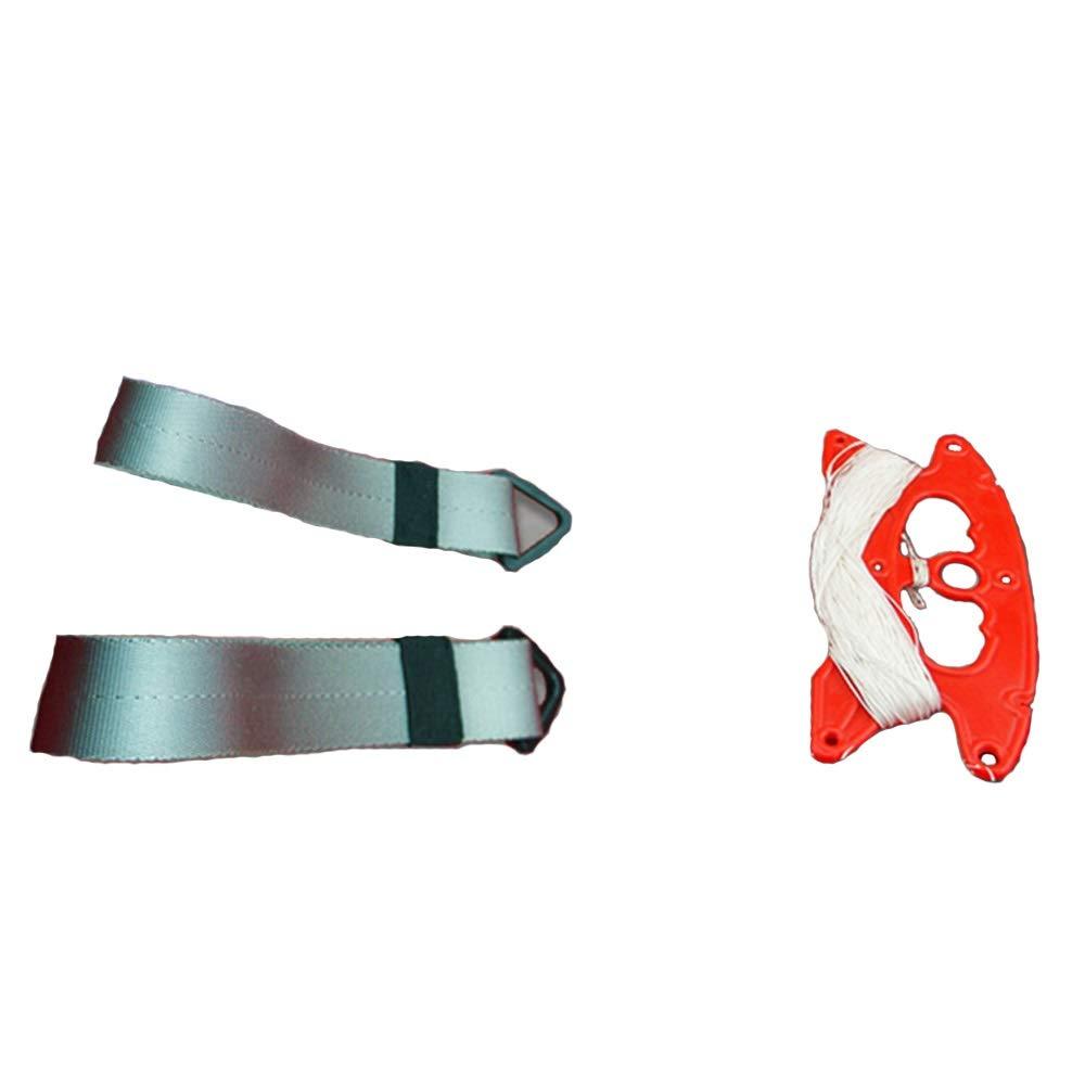 凧,アウトドア玩具 スタントカイト、ダブルラインカイト、ダブルラインカイト、スポーツカイトスタントボーカルサンダーウイングアダルトカイト スポーツ健康の楽しみ (色 : B07QWZJWD6 : C) C) B07QWZJWD6 D D, やまよ魚房:d98842be --- ferraridentalclinic.com.lb