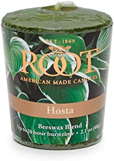 product image for Root Candles 20-Hour Scented Beeswax Blend Votive Candles, 18-Count, Hosta