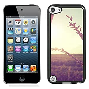 New Beautiful Custom Designed Cover Case For iPod 5 With Wheat Branch In Sunlight Phone Case