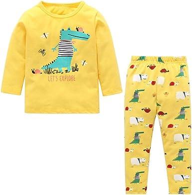 Conjuntos de Pijamas para bebés y niñas, Patrón de Dinosaurio ...