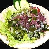 サンエイオンラインショップ 業務用海藻かんてんダイエットサラダ 100g 9食分