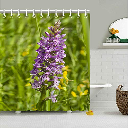 Tow Yus Dala Polyester Shower Curtain for Bath Decor-Inflorescence dactylorhiza maculata Heath Spotted Orchid ()